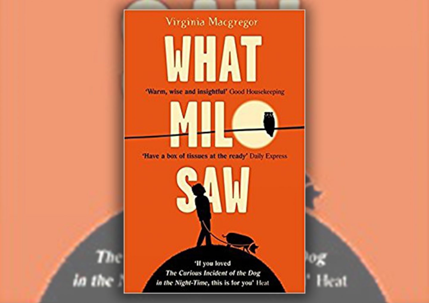Review: What Milo Saw by Virginia Macgregor Book