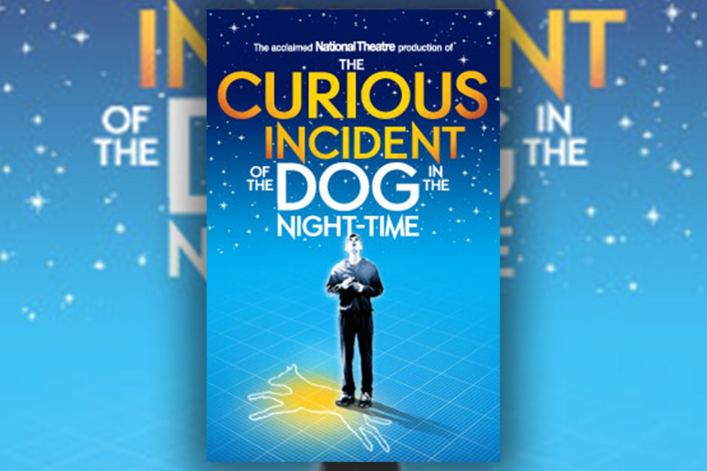 Review: The Curious Incident of the Dog in the Night Time