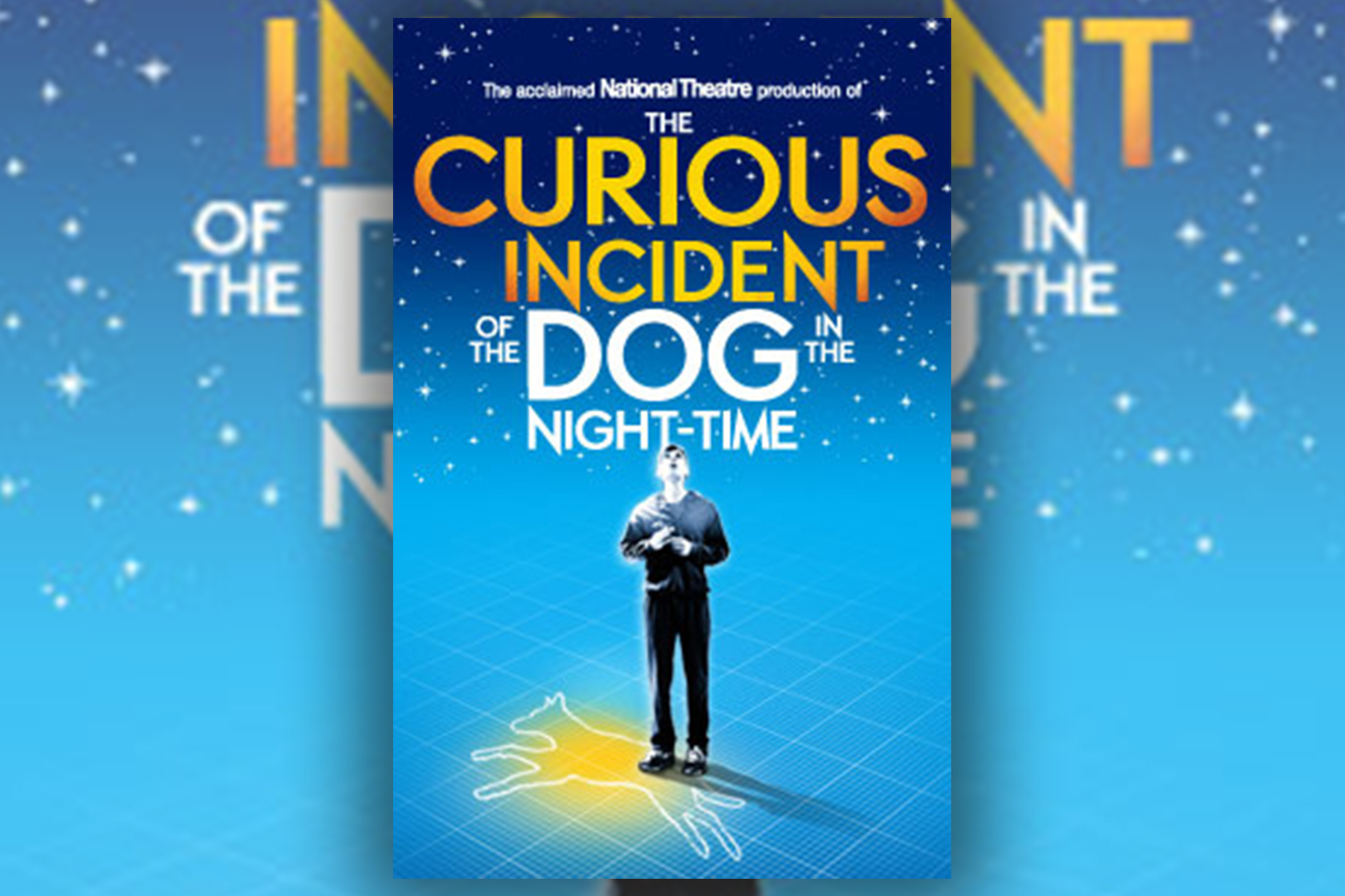 The Curious Incident of the Dog In The Night Time Book Review